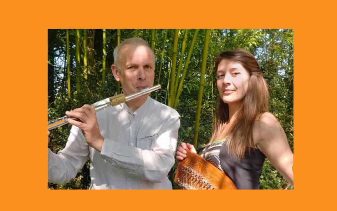 Les mercredis musicaux : Duo Nygma