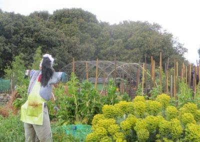Jardin partagé et pédagogique de Cramphore