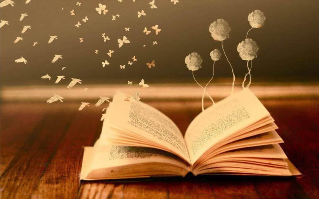 Les coups de cœur littéraires de l'automne