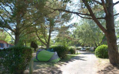 Réouverture des campings municipaux